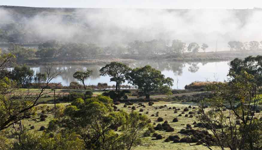 Stay and explore the Murray River at Mannum, South Australia
